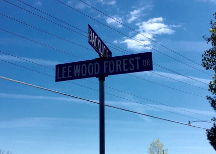 Leewood1