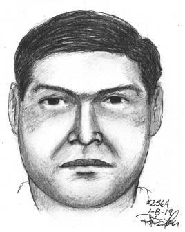 annandale assault sketch 010819